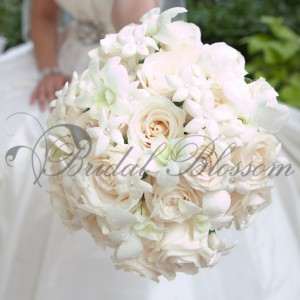 101Roses, orchids, Stephanotis